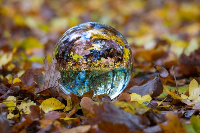 autumn-1809770_960_720