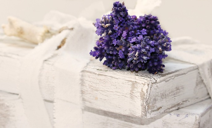 lavender-2430847_960_720